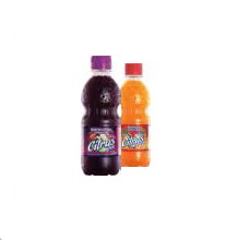 Suco Citrus 330ml
